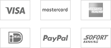 mastercard visa paypal amex